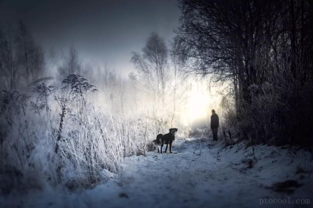 波兰摄影师和她梦幻的童话世界(冬)