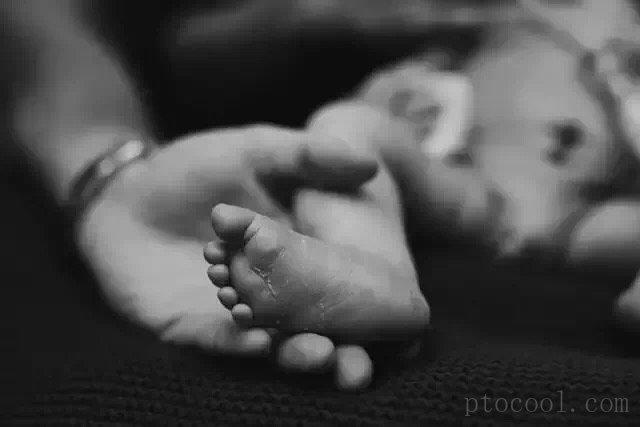 摄影师为仅有5天生命的小宝宝 拍摄的人间旅程……