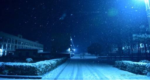 飘雪的夜晚